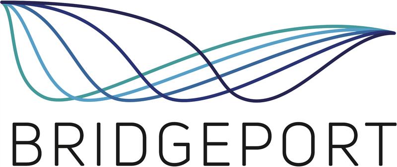 Bridgeport Consulting LLC